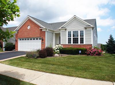 Mundelein Single Family Home For Sale: 3011 Ravinia Circle