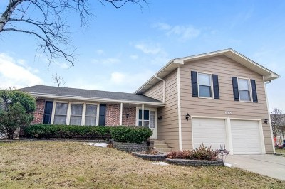 Hoffman Estates Single Family Home For Sale: 1225 Newcastle Lane