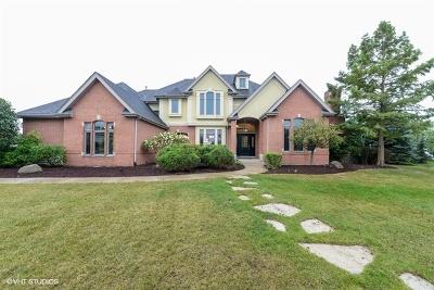 Mokena, Frankfort, New Lenox Rental For Rent: 11779 Shalestone Court