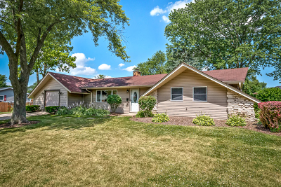 Schaumburg Single Family Home For Sale: 407 Orleans Lane