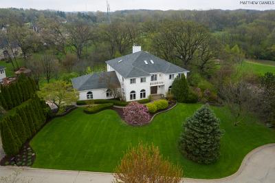 Lemont Single Family Home For Sale: 13175 Fox Lane