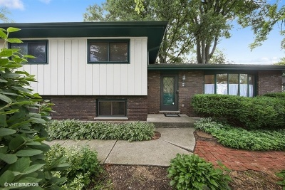 Downers Grove Single Family Home For Sale: 5635 Plymouth Street