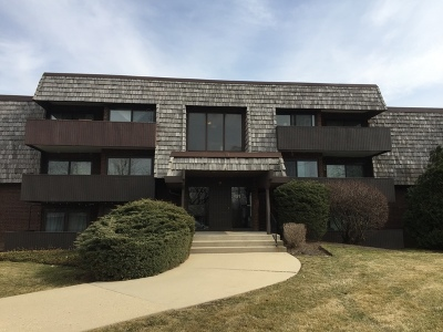 Du Page County Condo/Townhouse New: 491 Timber Ridge Drive #302