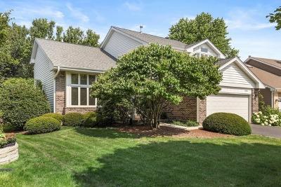 Naperville Single Family Home New: 1631 Terri Circle