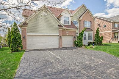 Palatine Single Family Home New: 1362 North Crabtree Drive