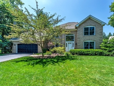 Naperville Single Family Home New: 56 Rock River Court