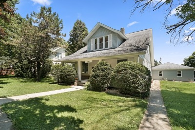 Beecher Single Family Home For Sale: 529 Elliott Street