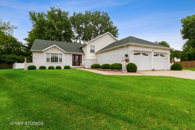 Bourbonnais Single Family Home New: 470 North Thames Court