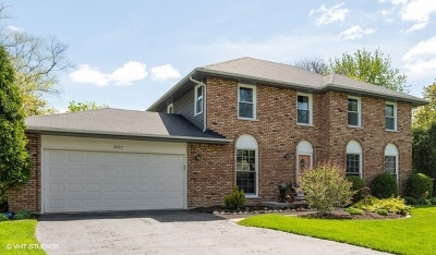 Naperville IL Single Family Home New: $439,900