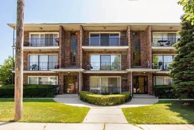 Hickory Hills Condo/Townhouse New: 8735 South Roberts Road #3C