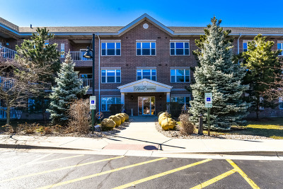 South Elgin Condo/Townhouse For Sale: 10 North Gilbert Street #205
