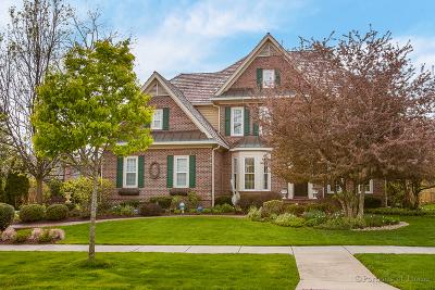 Du Page County Rental New: 910 Newton Avenue