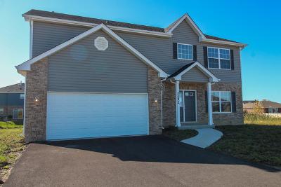 New Lenox Single Family Home New: 2252 Runway Drive