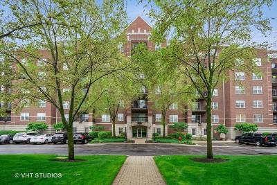 Palatine Condo/Townhouse New: 470 West Mahogany Court #701