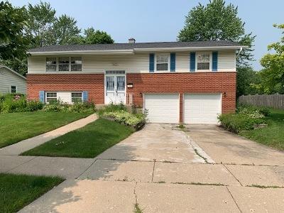 Palatine Single Family Home New: 500 North Winston Drive