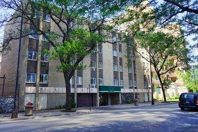 Condo/Townhouse New: 5420 North Sheridan Road #207