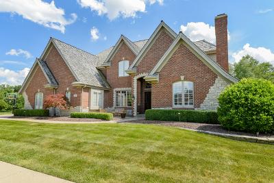 Lemont Single Family Home For Sale: 94 Rose Court