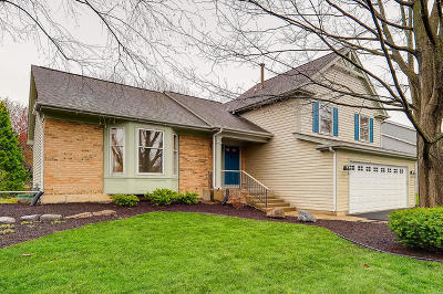 Schaumburg Single Family Home For Sale: 325 Kingsbury Drive
