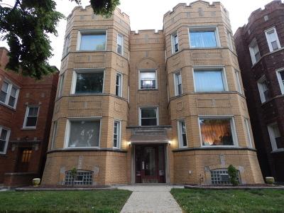 Chicago Multi Family Home New: 8229 South Eberhart Avenue