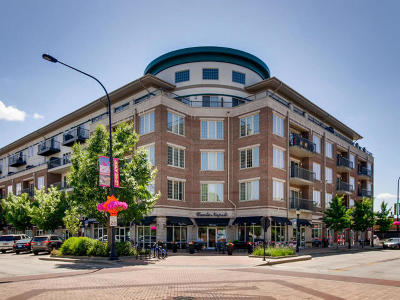 Condo/Townhouse New: 100 South Emerson Street #408