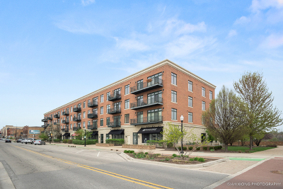 Aurora Condo/Townhouse New: 140 South River Street #201