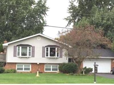 New Lenox Single Family Home New: 911 South Schoolhouse Road