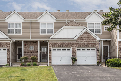 Du Page County Condo/Townhouse New: 363 Arboretum Drive #363
