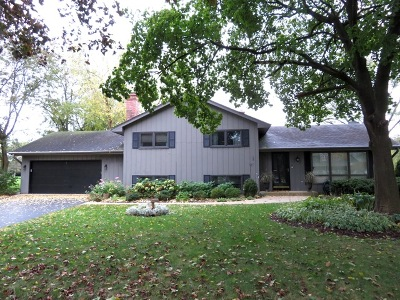 Warrenville Single Family Home For Sale: 29w435 Forestview Drive
