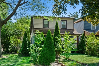 Cook County Multi Family Home New: 1125 Pitner Avenue
