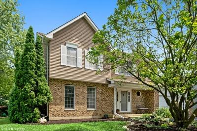 Naperville Single Family Home New: 1488 Cortland Drive