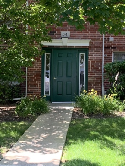 Woodstock Condo/Townhouse New: 541 Leah Lane #2A