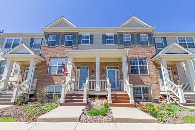 Bartlett IL Condo/Townhouse New: $233,500