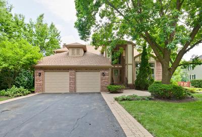 Vernon Hills Single Family Home For Sale: 45 Saint Clair Lane