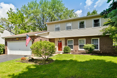 Palatine Single Family Home New: 148 East Cunningham Drive