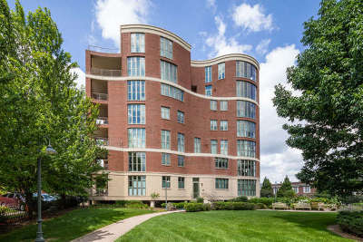 Naperville Condo/Townhouse New: 520 South Washington Street #203