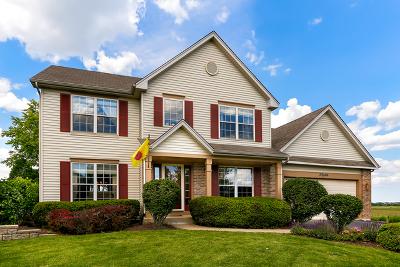 Plainfield Single Family Home New: 23606 Denise Street