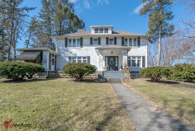 Dwight Single Family Home For Sale: 315 North Prairie Avenue