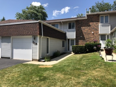 Bolingbrook Single Family Home New: 204 Walker Drive