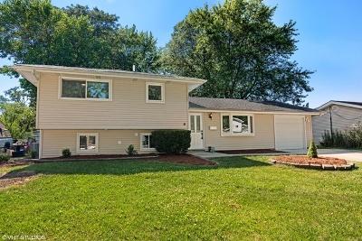 Schaumburg Single Family Home New: 612 South Walnut Lane