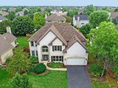South Elgin Single Family Home For Sale: 809 West Thornwood Drive