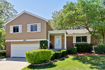 Vernon Hills Single Family Home For Sale: 215 Augusta Drive