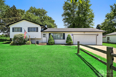 Spring Grove Single Family Home For Sale: 8820 Richardson Road
