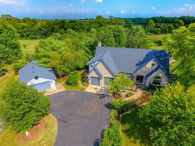 Homer Glen Single Family Home For Sale: 18133 Haas Road