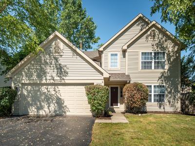 Aurora Single Family Home New: 1384 Roxbury Drive