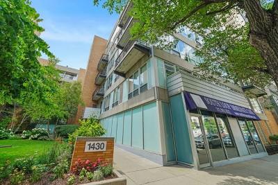 Condo/Townhouse New: 1430 South Michigan Avenue #210