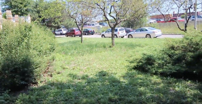 Chicago Residential Lots & Land New: 1354 West Evergreen Avenue