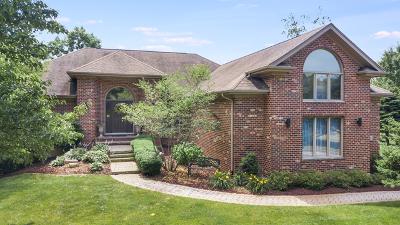 Lemont Single Family Home For Sale: 13230 Da Vinci Street
