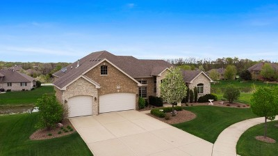 Mokena Single Family Home For Sale: 19309 Beaver Creek Court