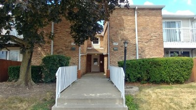 Hoffman Estates Condo/Townhouse For Sale: 1973 Kenilworth Circle #B