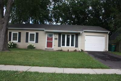 Romeoville Single Family Home New: 325 Kent Avenue